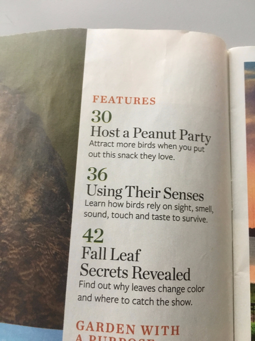 "Table of Contents from an issue of Birds & Blooms magazine, encouraging people to ""host a peanut party"""